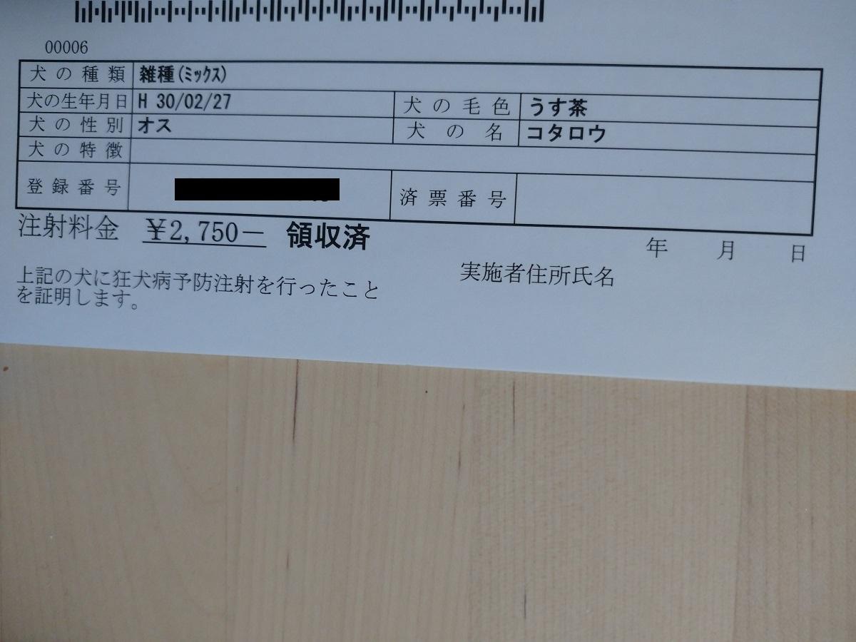 f:id:kotaro-dog:20210330005147j:plain