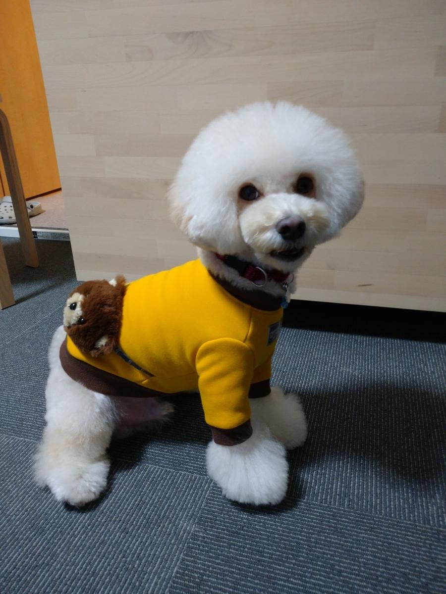 f:id:kotaro-dog:20210703004313j:plain