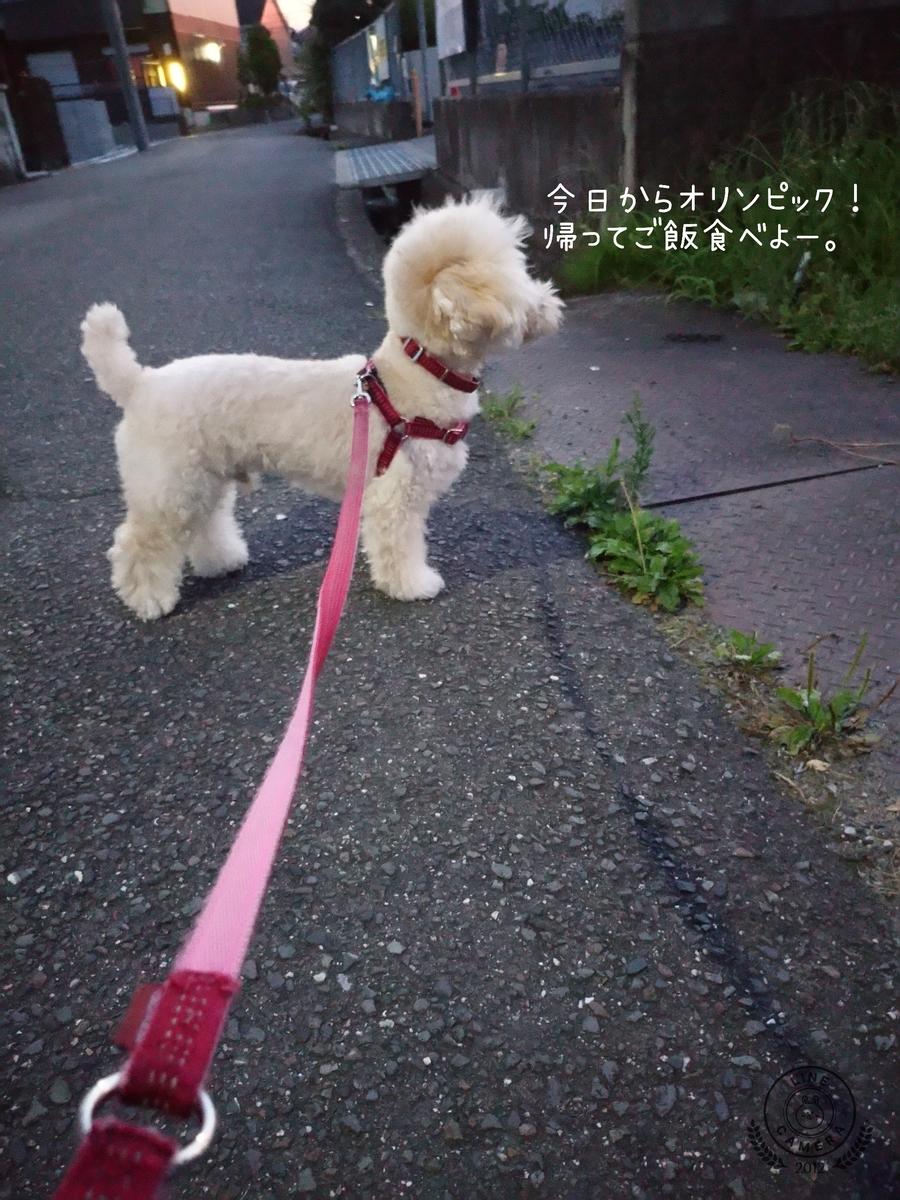 f:id:kotaro-dog:20210724001351j:plain