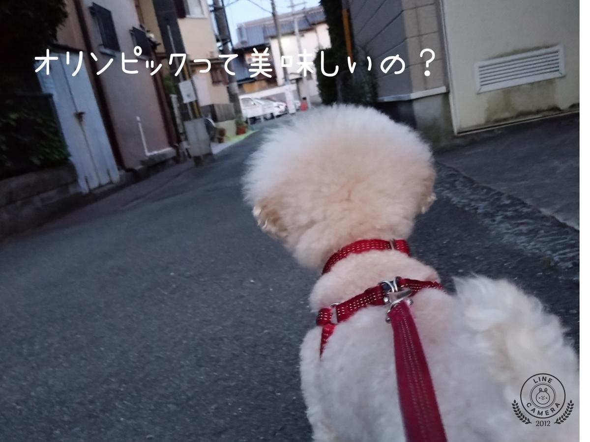 f:id:kotaro-dog:20210724002330j:plain