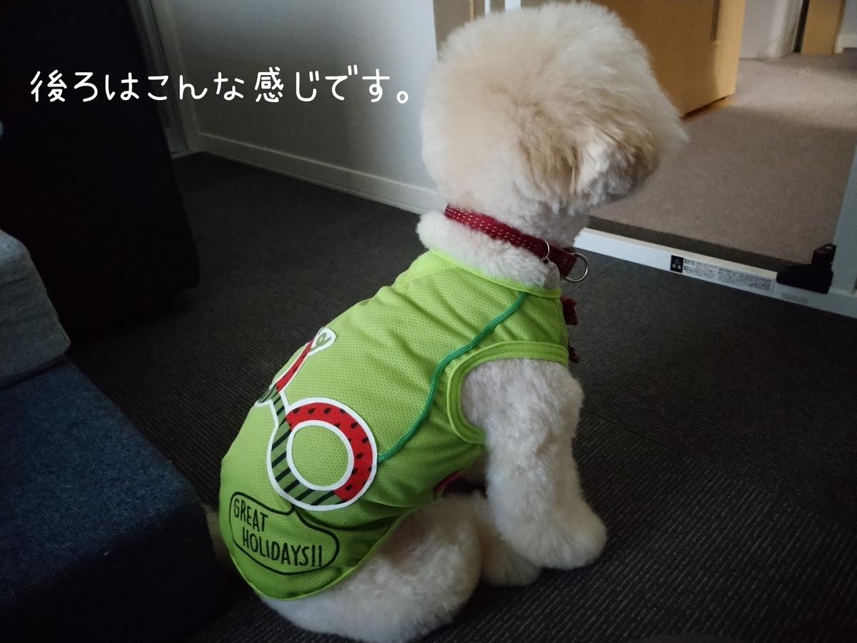 f:id:kotaro-dog:20210725220557j:plain