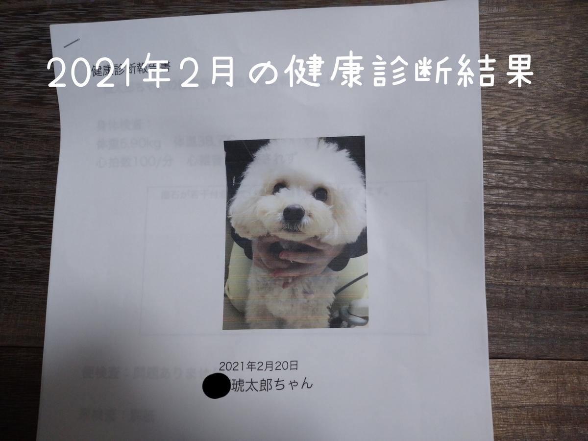 f:id:kotaro-dog:20210729235137j:plain