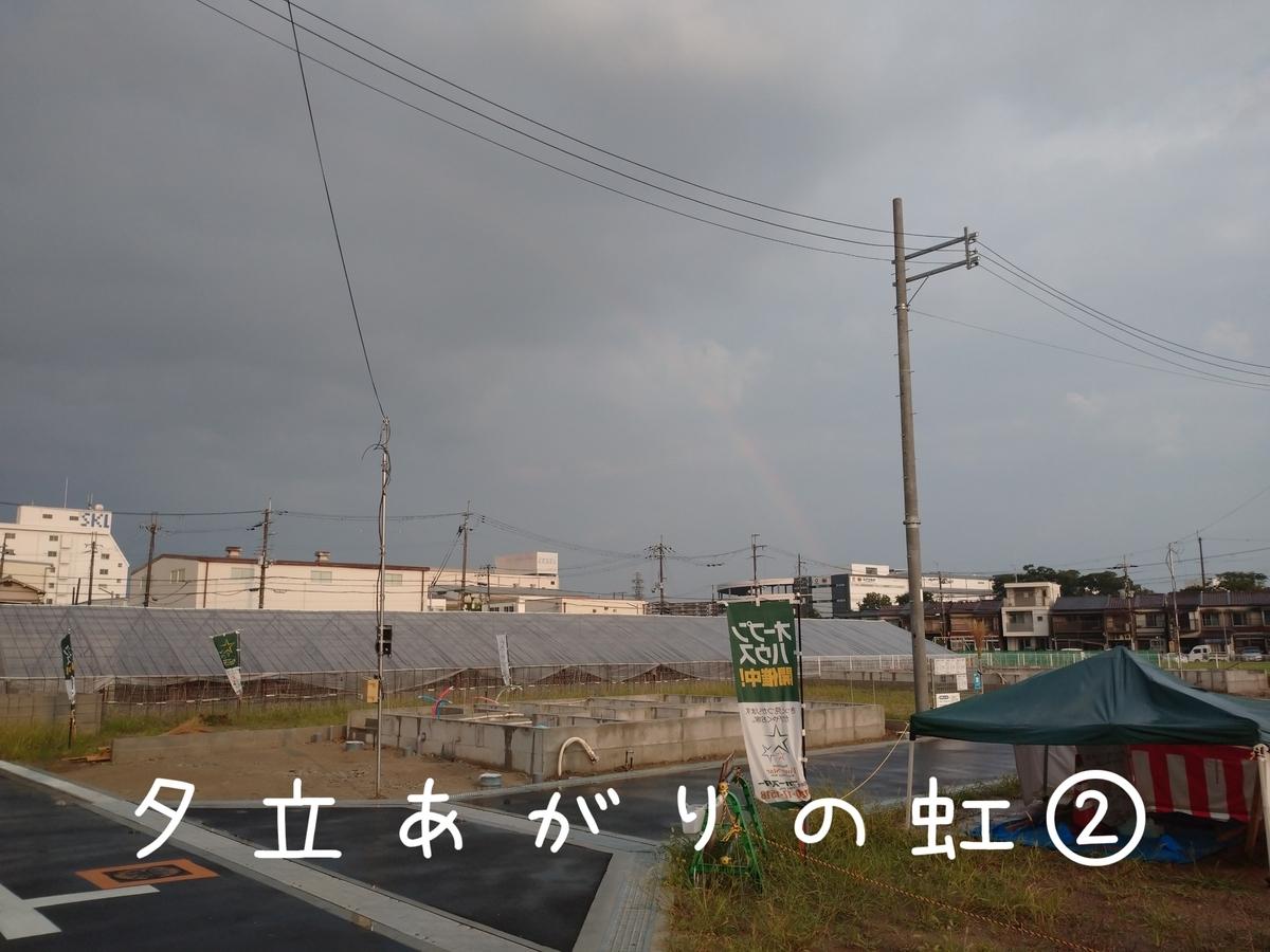 f:id:kotaro-dog:20210801205924j:plain