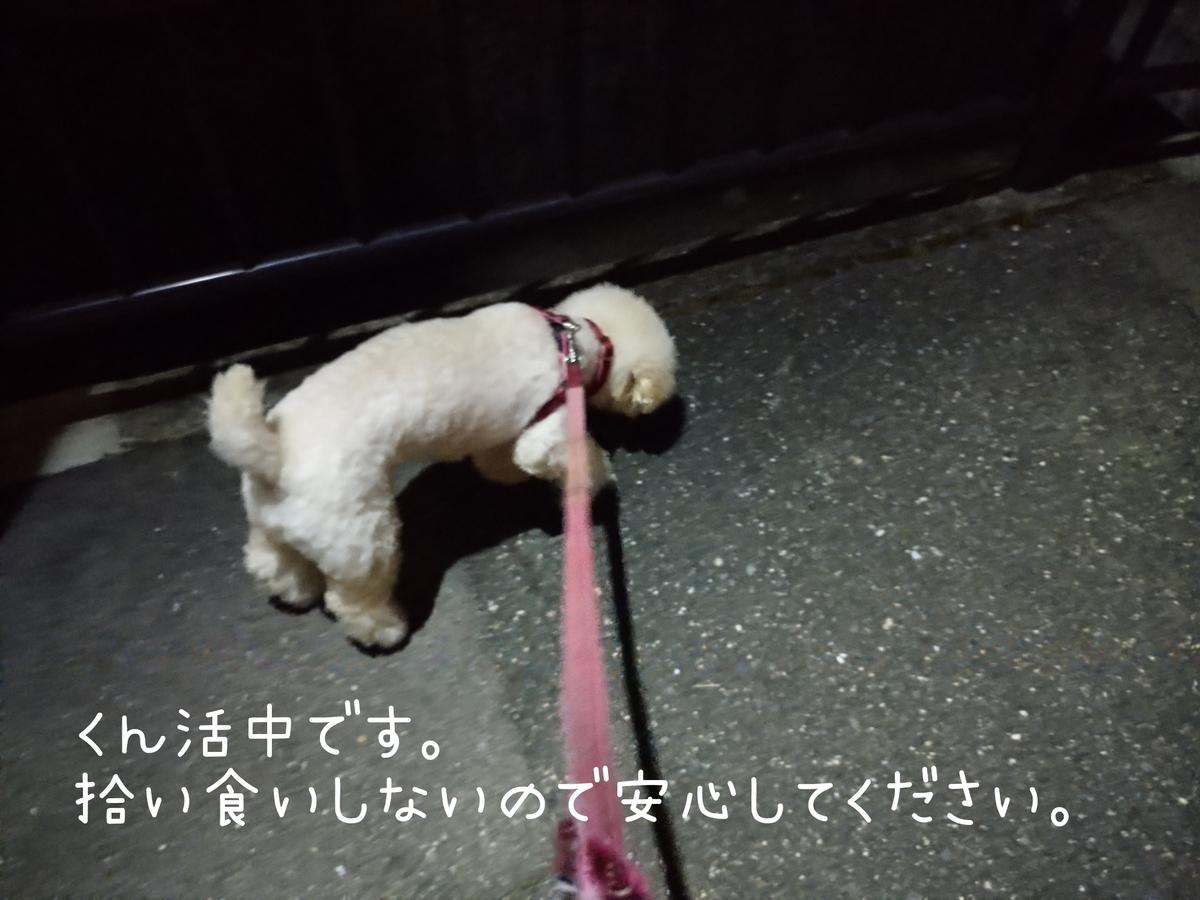 f:id:kotaro-dog:20210804012453j:plain