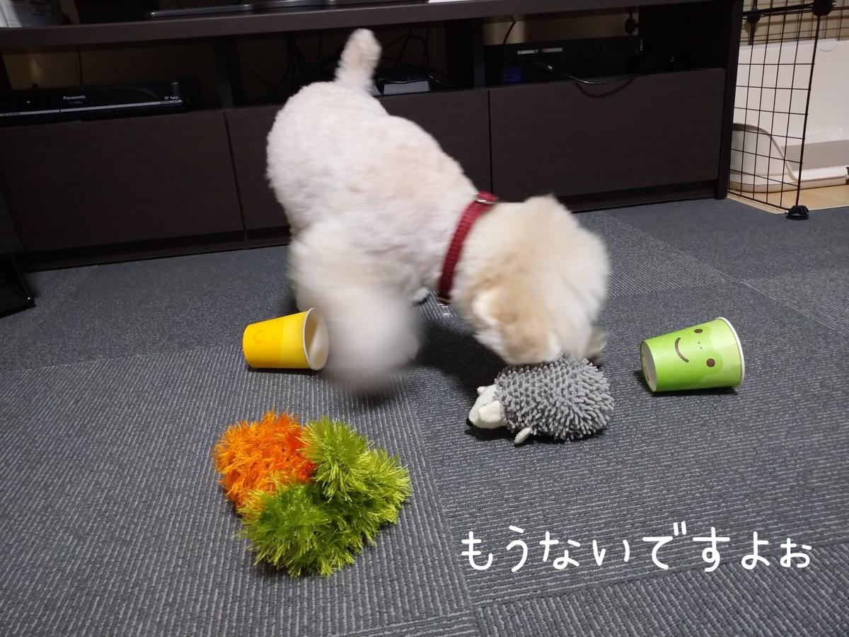 f:id:kotaro-dog:20210806013312j:plain