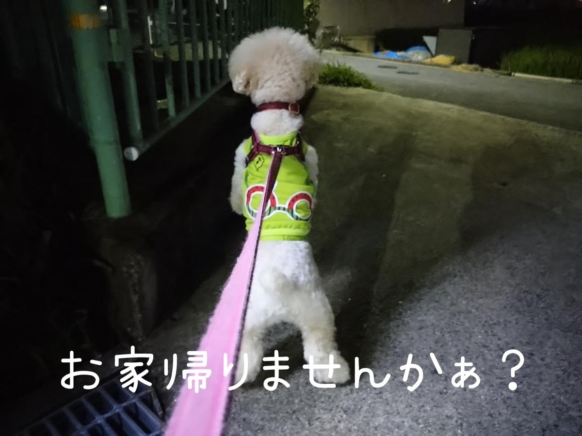 f:id:kotaro-dog:20210806014034j:plain