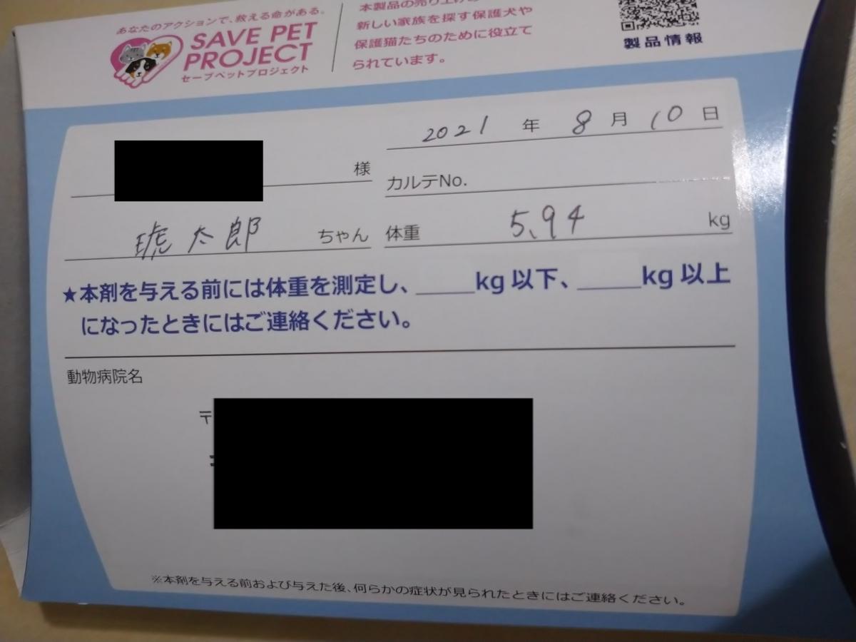 f:id:kotaro-dog:20210811022824j:plain