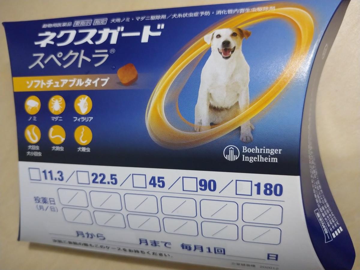 f:id:kotaro-dog:20210811022851j:plain