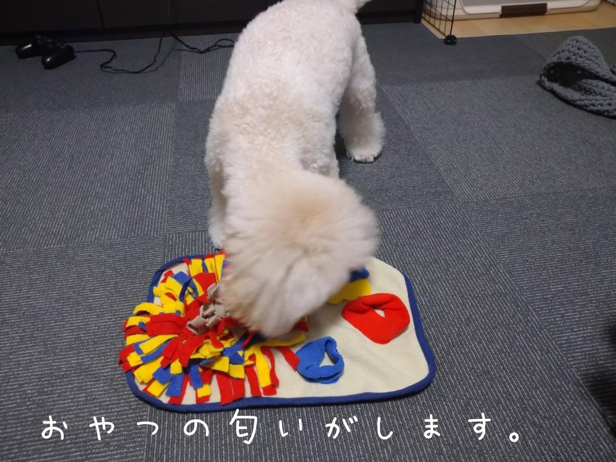 f:id:kotaro-dog:20210813002624j:plain