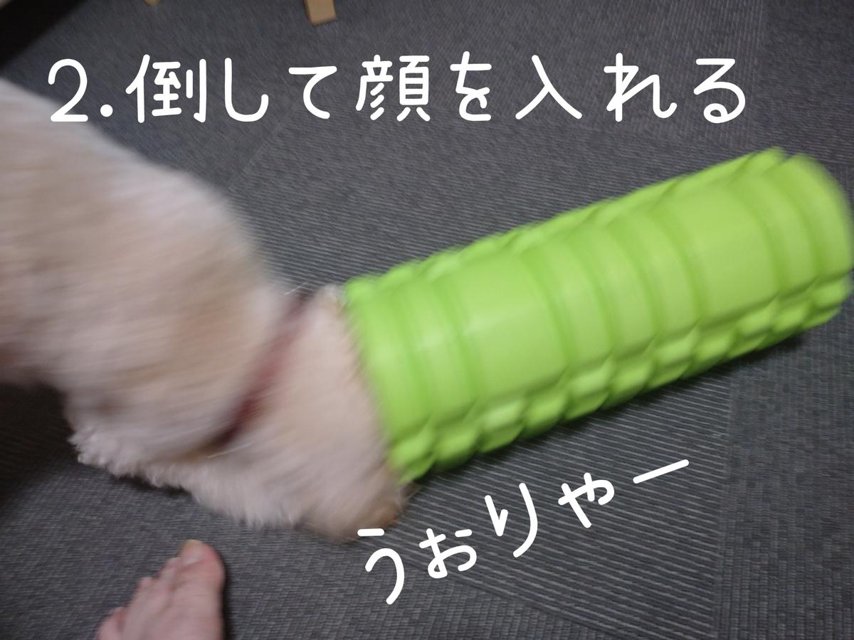 f:id:kotaro-dog:20210831003708j:plain