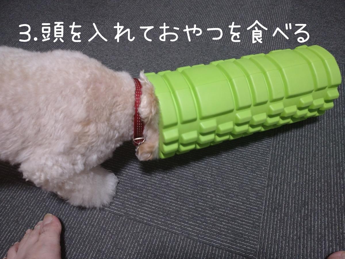 f:id:kotaro-dog:20210831003806j:plain