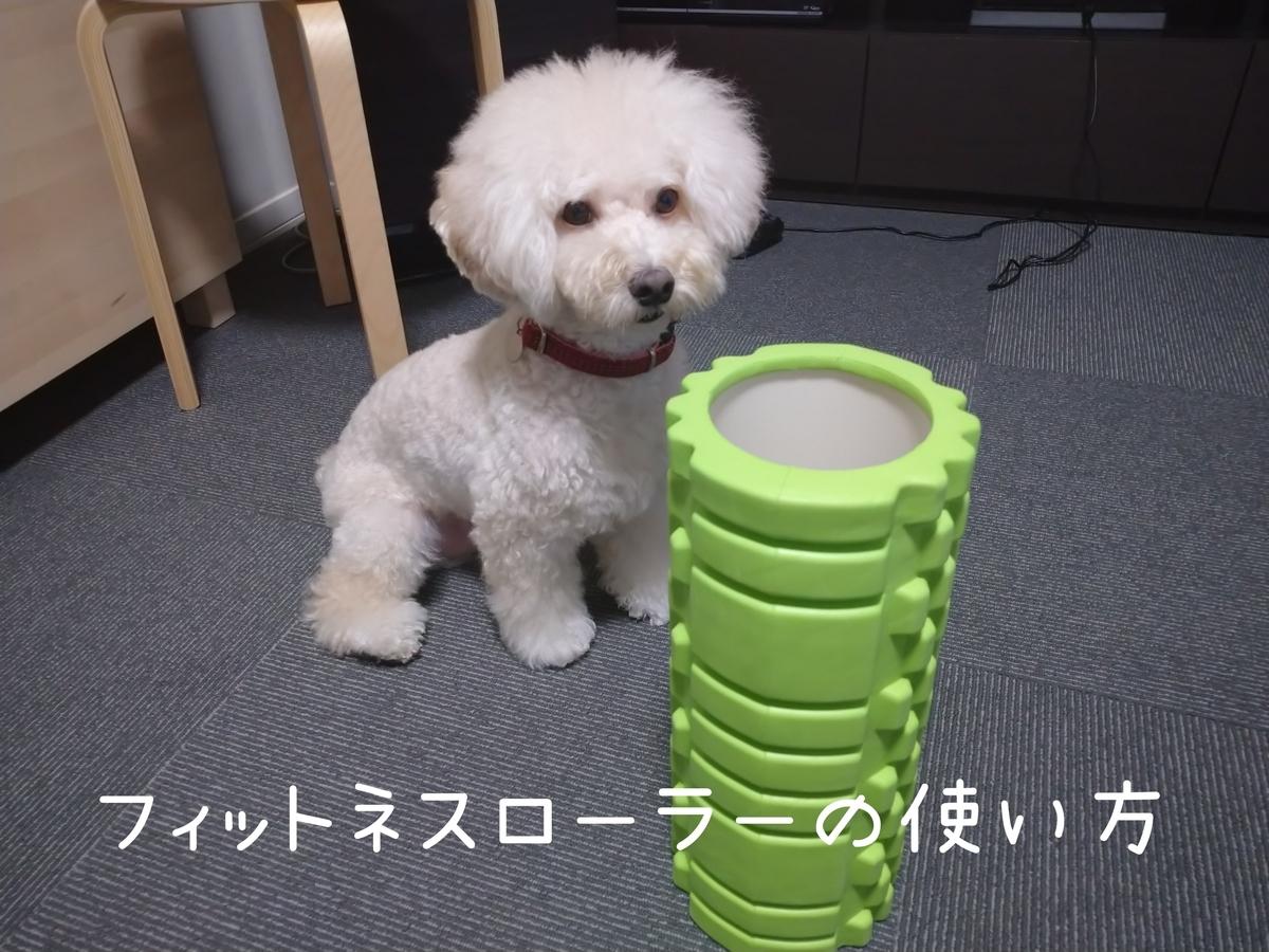 f:id:kotaro-dog:20210831004133j:plain
