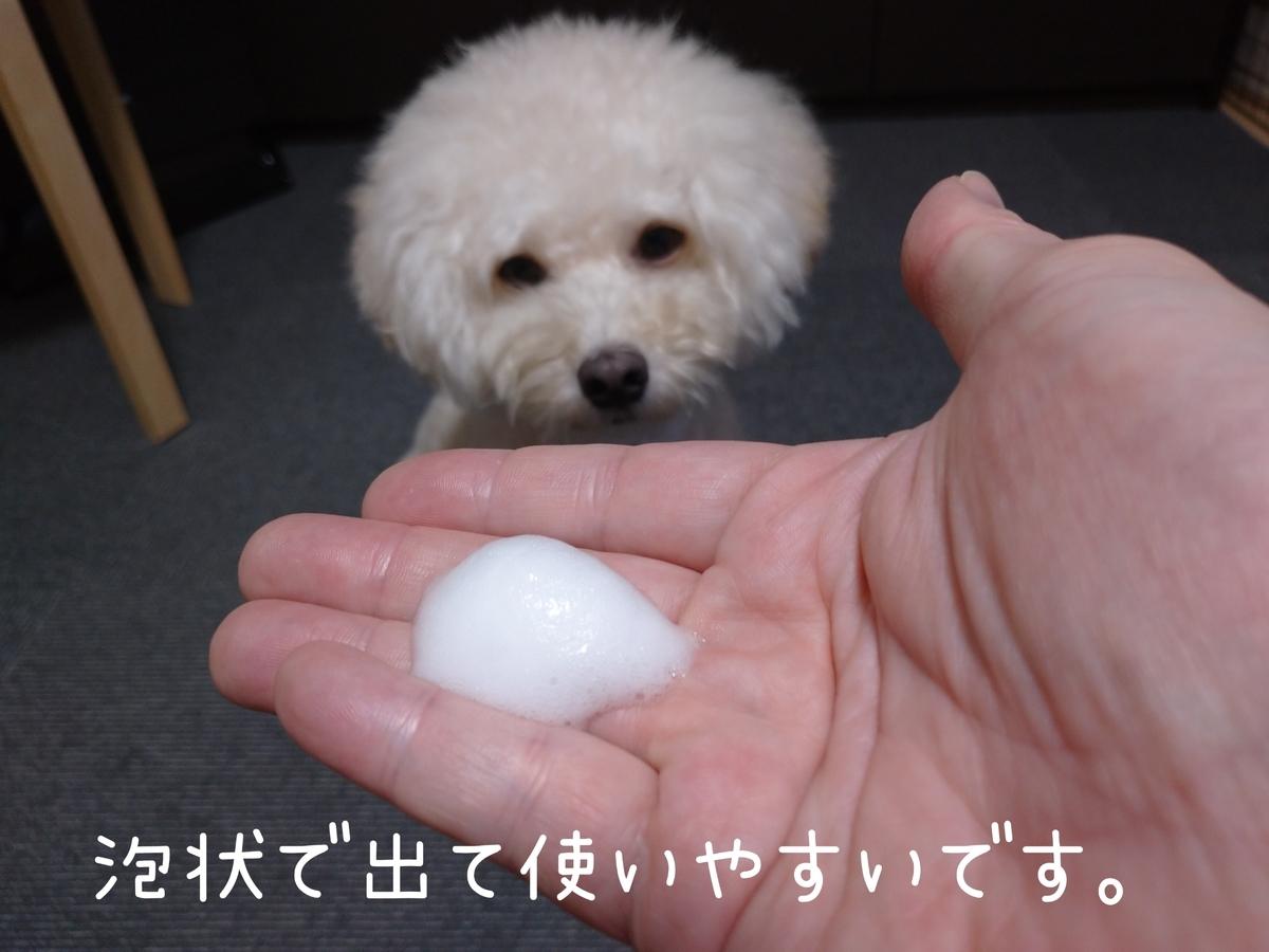 f:id:kotaro-dog:20210906235439j:plain