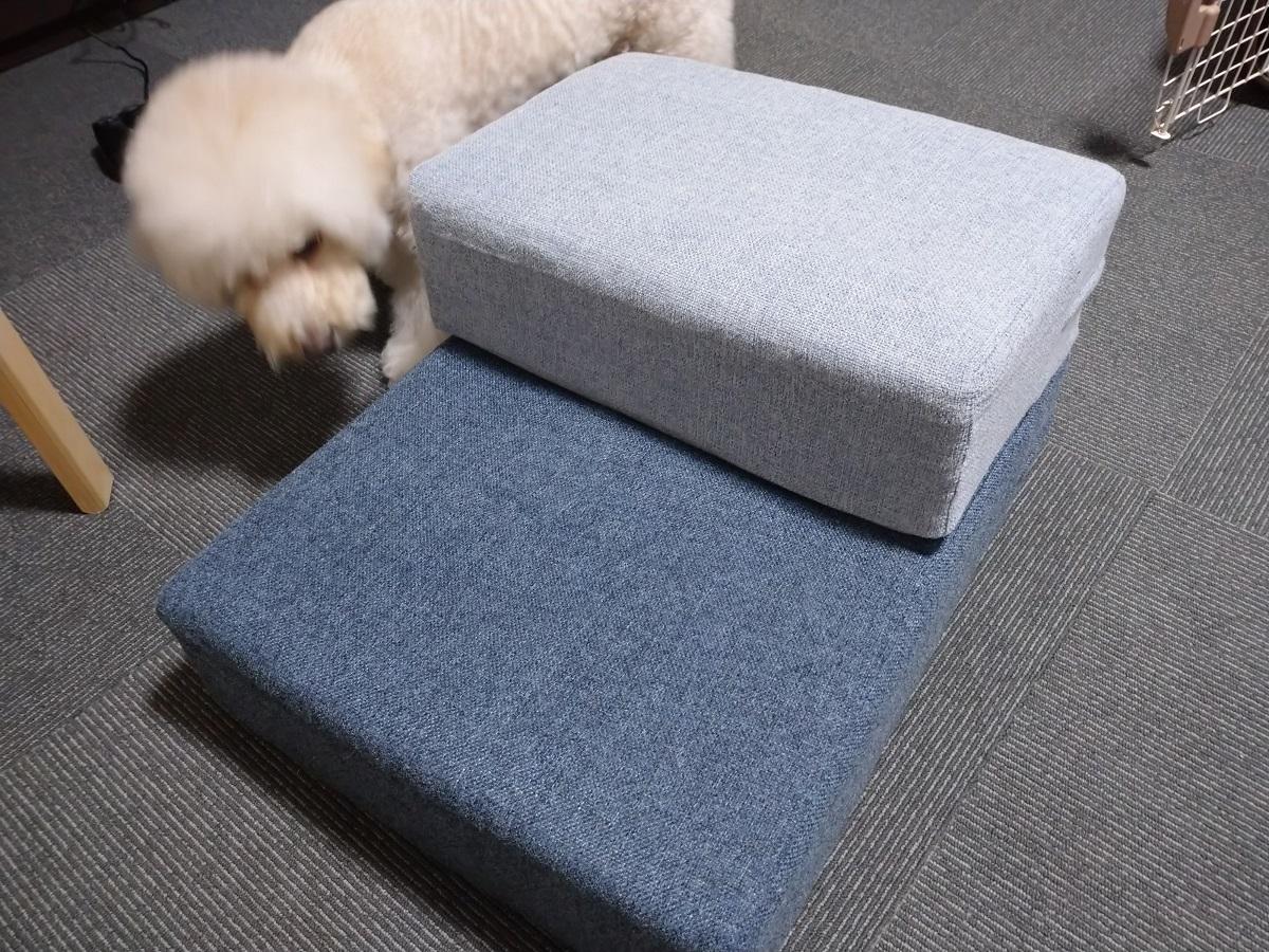 f:id:kotaro-dog:20210909004643j:plain