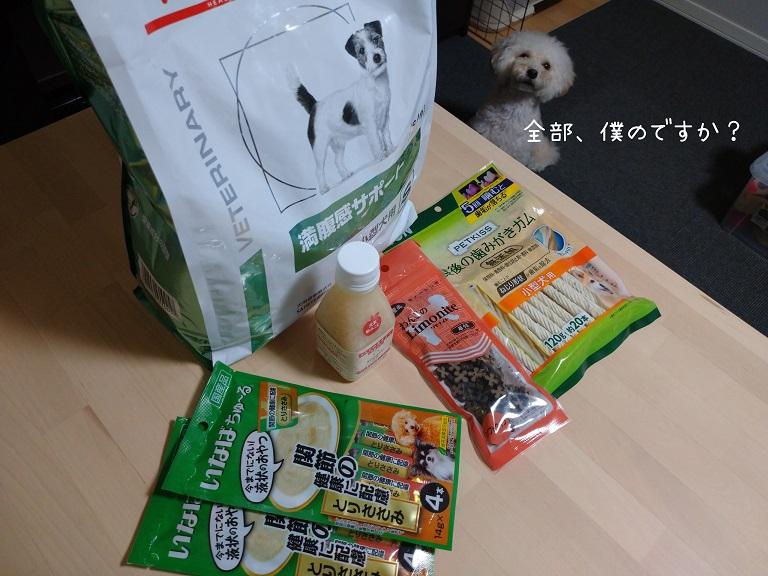 f:id:kotaro-dog:20210912215142j:plain