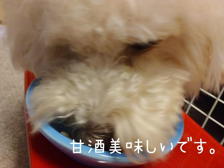 f:id:kotaro-dog:20210918200430j:plain