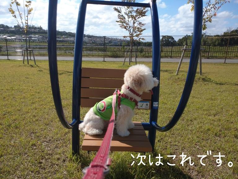 f:id:kotaro-dog:20210919190110j:plain