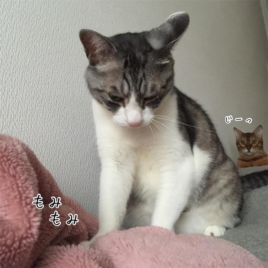 f:id:kotaro-nyan:20160818083416j:image
