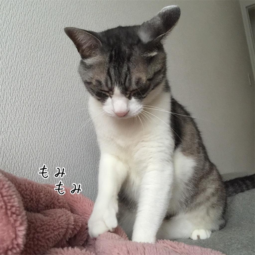 f:id:kotaro-nyan:20160818083614j:image