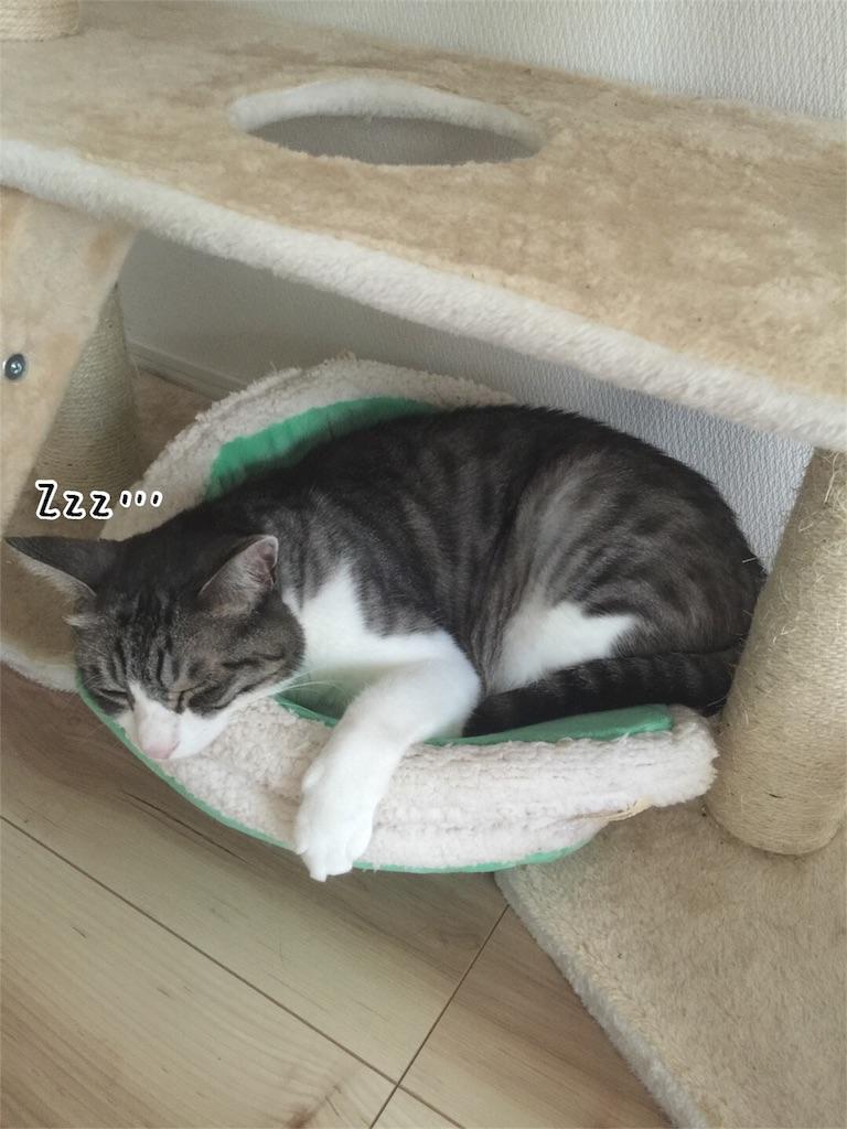 f:id:kotaro-nyan:20160824085842j:image