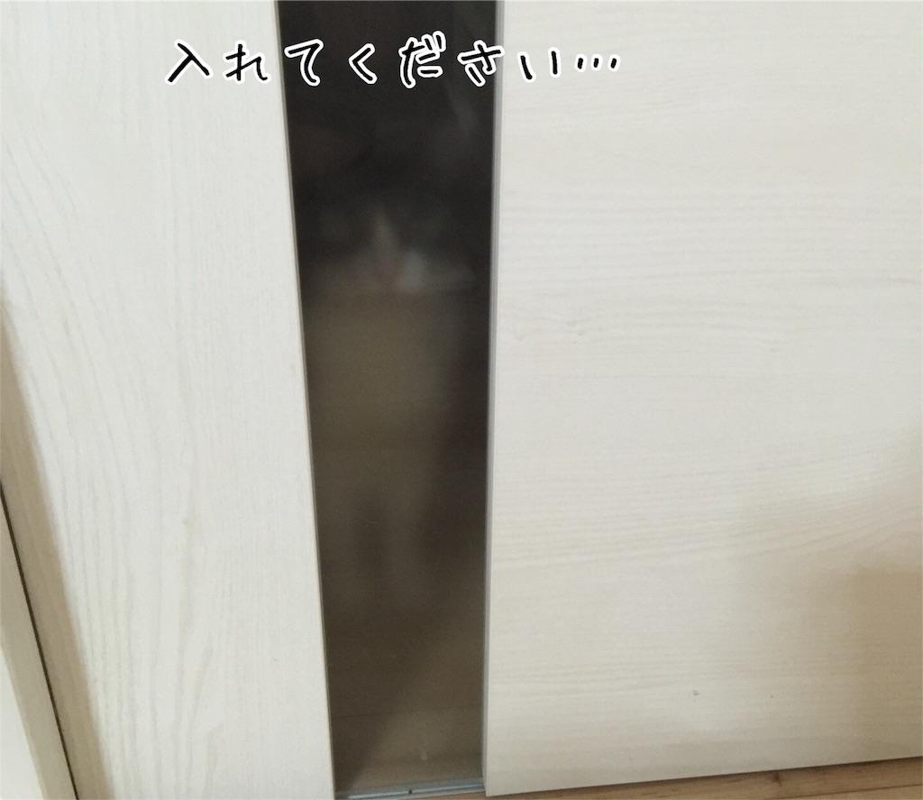 f:id:kotaro-nyan:20160907085249j:image