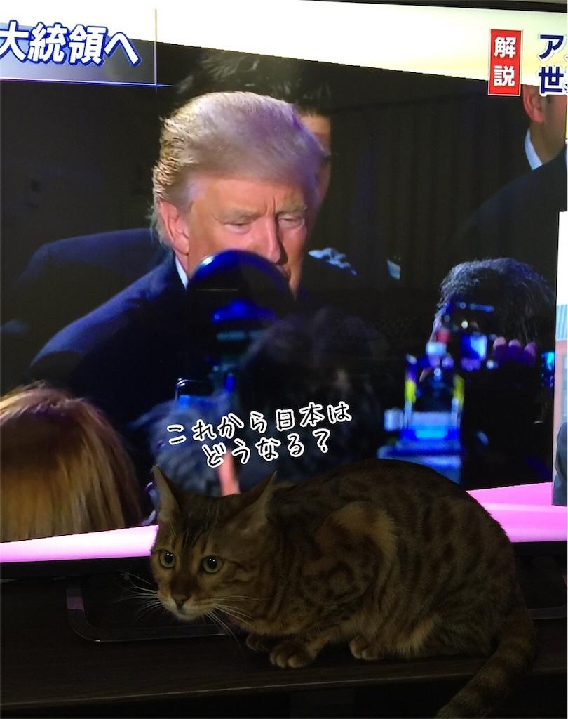 f:id:kotaro-nyan:20161109214652j:image