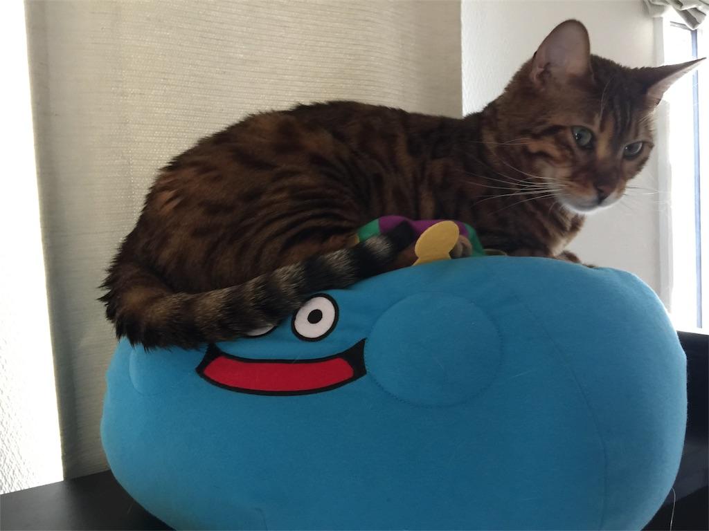 f:id:kotaro-nyan:20170407151456j:image