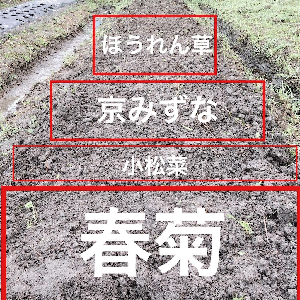f:id:kotaro1538:20200929132241j:image