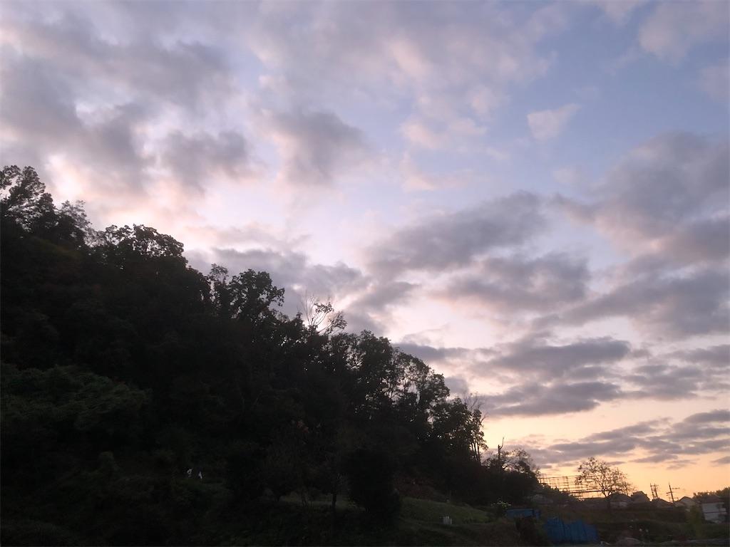 f:id:kotaro1538:20201111124604j:image