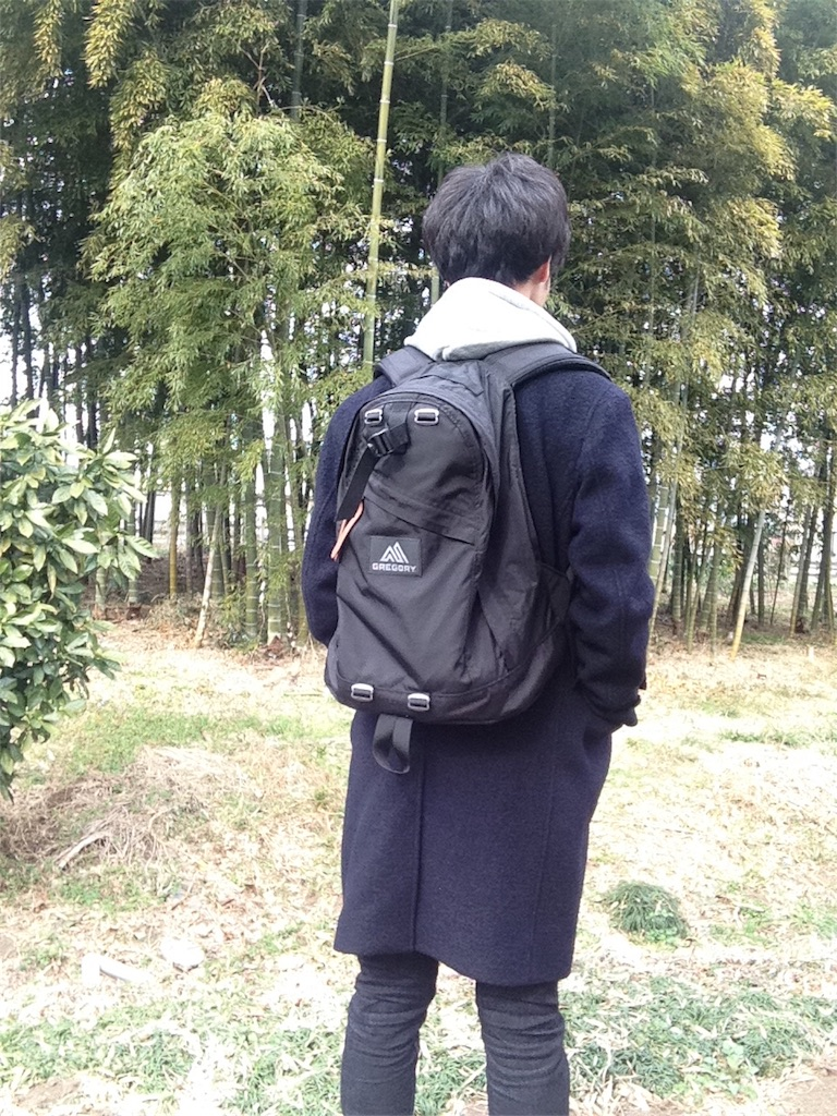 f:id:kotaronobuta:20170205133854j:image