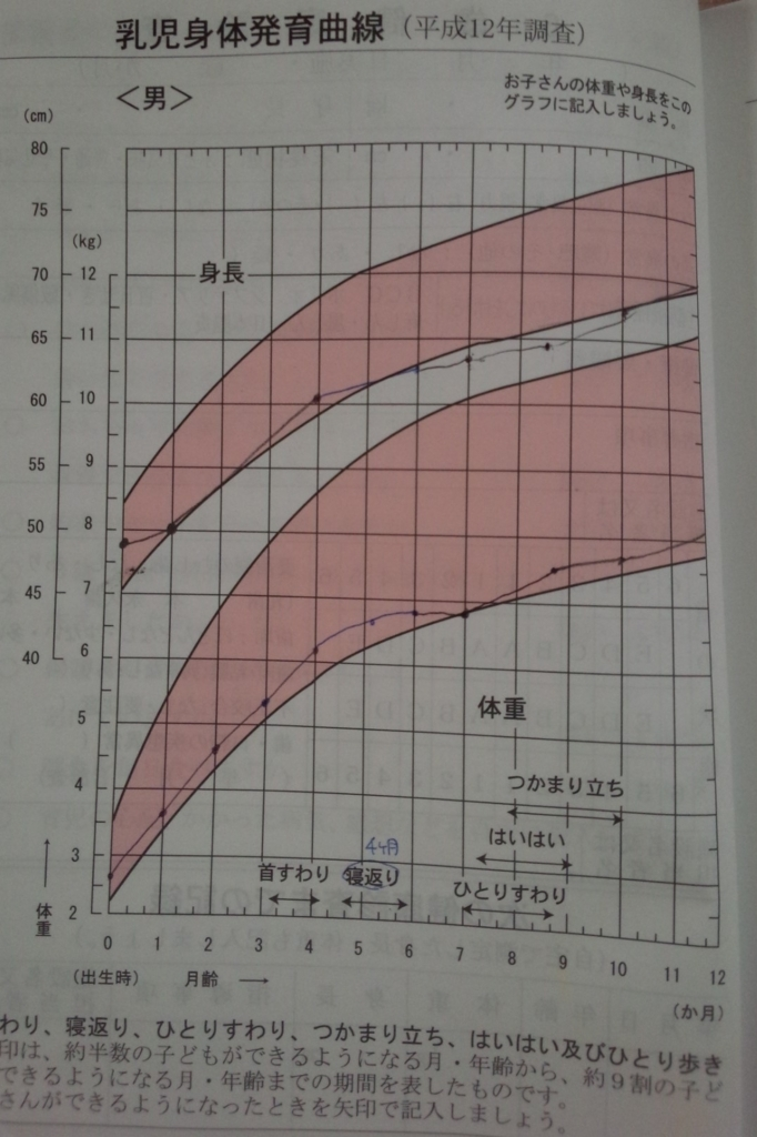 f:id:kotatsumama:20171117140720j:plain