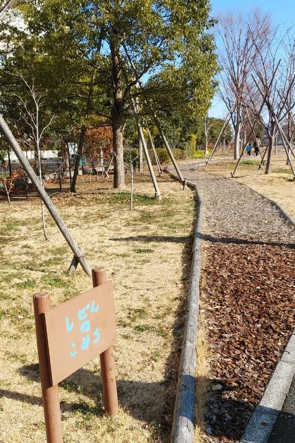 f:id:kotatsumama:20190314111940j:plain