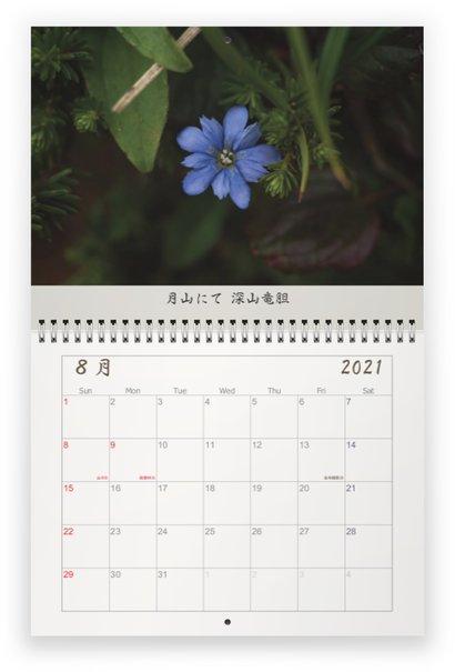 f:id:kotatsumuri39:20210502131242j:plain