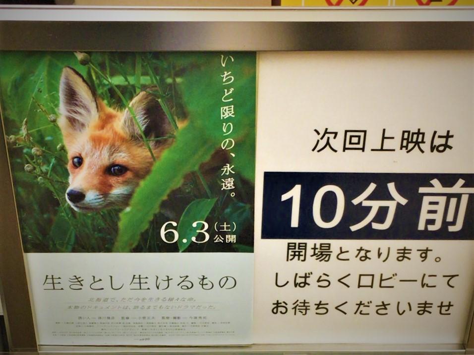 f:id:kotatusima:20170623143152j:plain