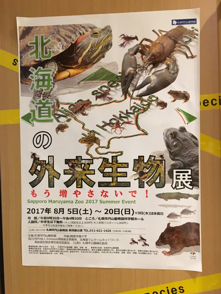 f:id:kotatusima:20170830230507j:plain