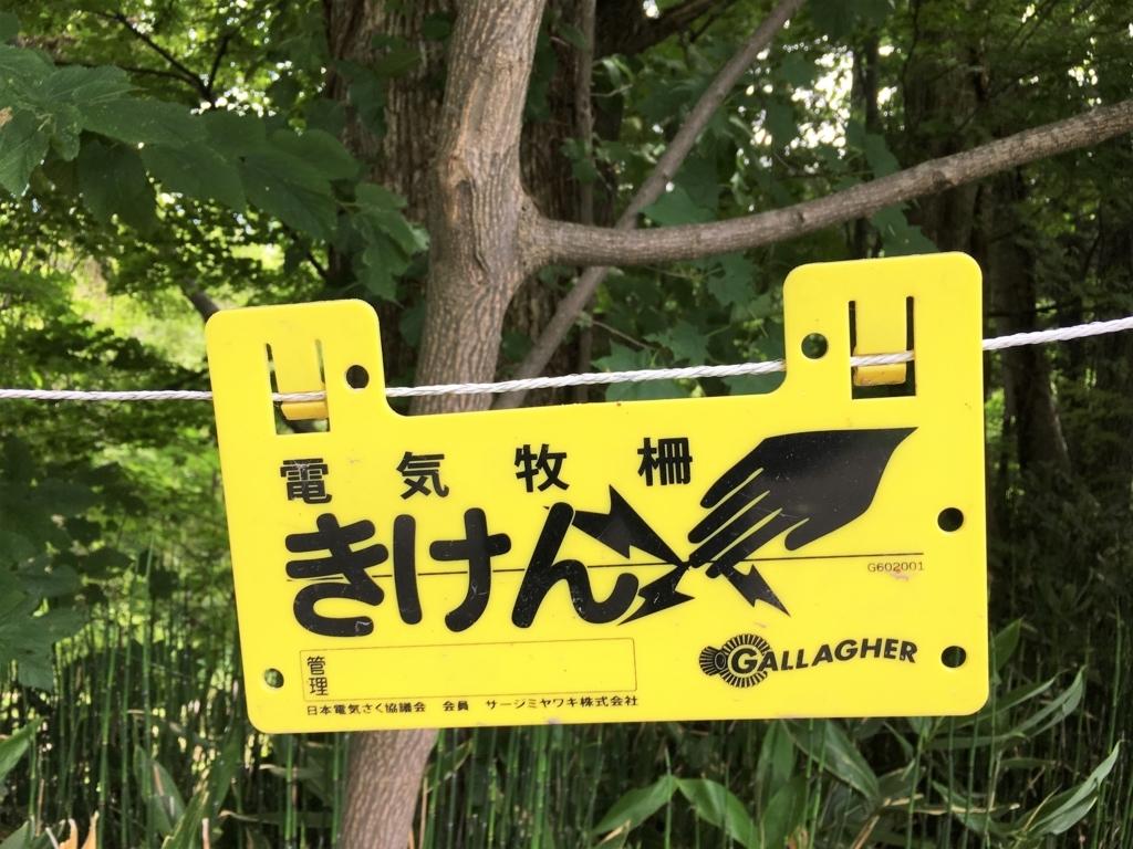 f:id:kotatusima:20170903223822j:plain