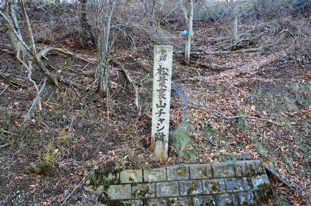 f:id:kotatusima:20171125115345j:plain