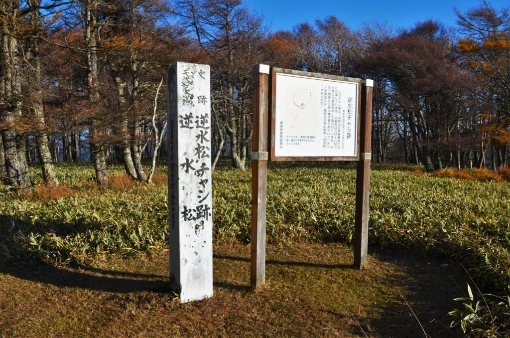 f:id:kotatusima:20171125155318j:plain
