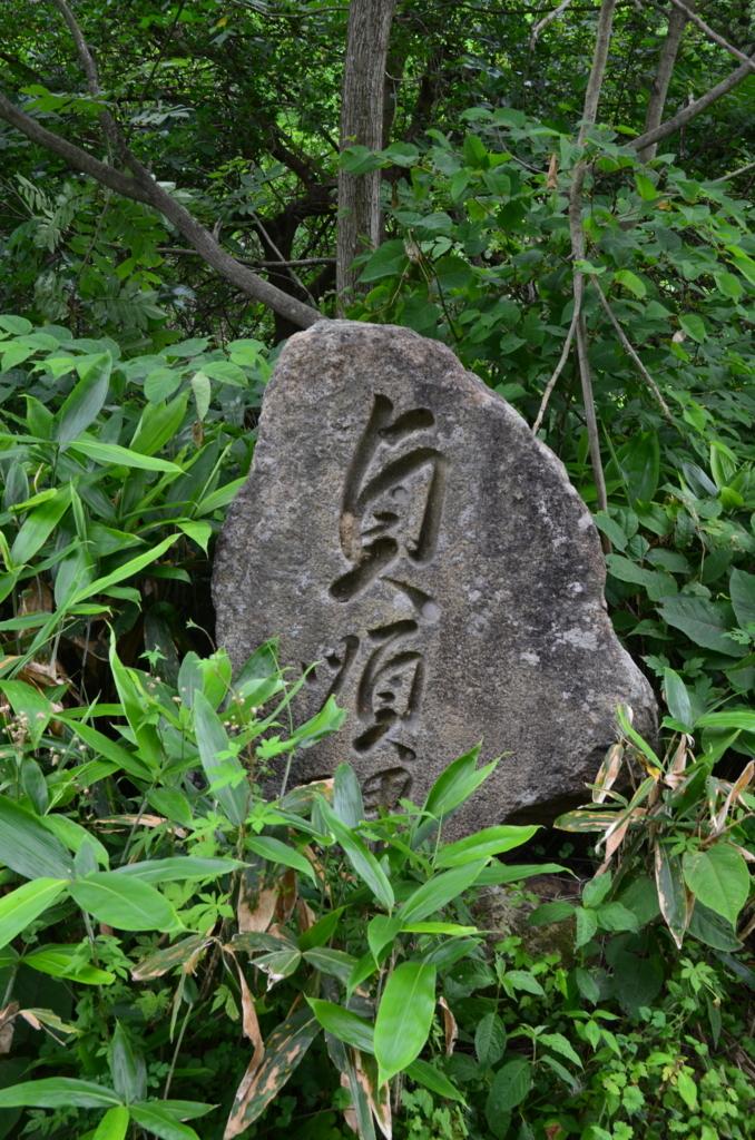 f:id:kotatusima:20180716213221j:plain