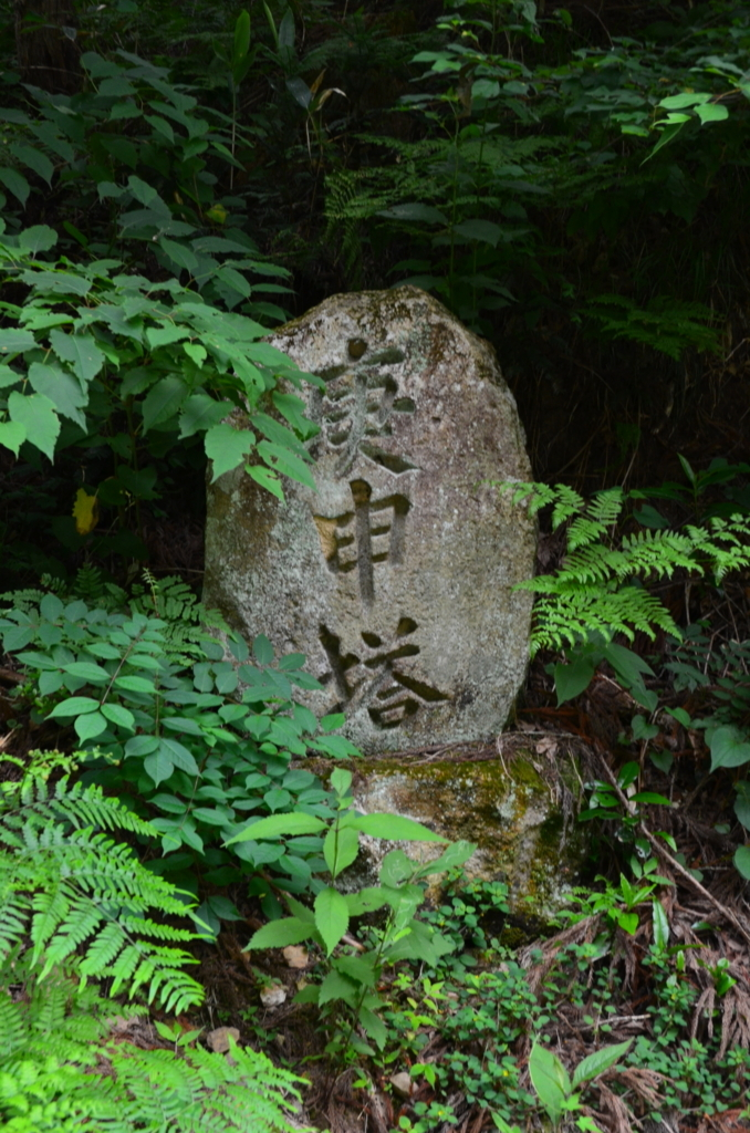 f:id:kotatusima:20180716213243j:plain