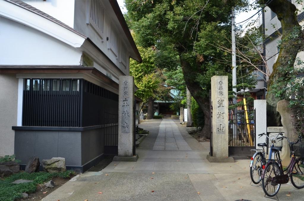 f:id:kotatusima:20181125114631j:plain