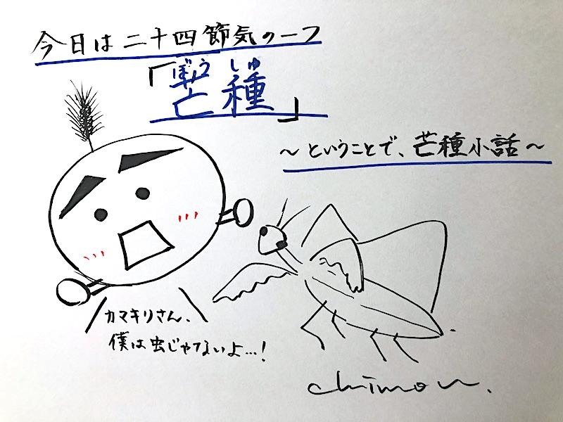 f:id:koto_no_ha_writing:20200605203232j:plain
