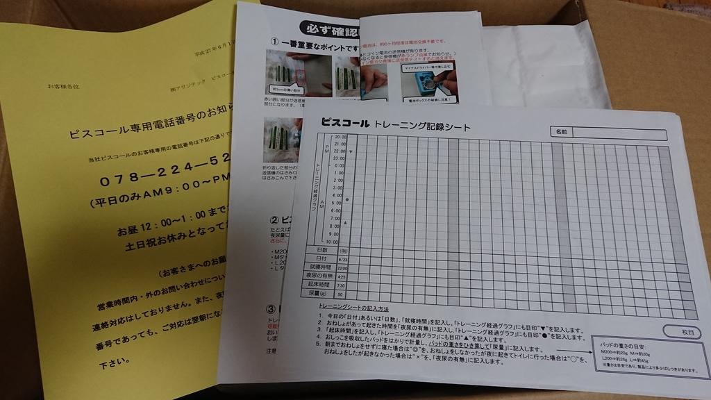 ピスコールのトレーニング記録シート