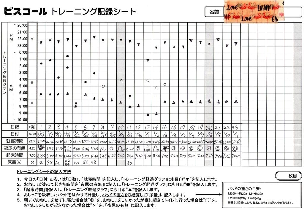 ピスコール使用の実際の記録