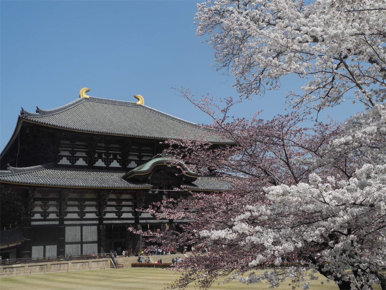 f:id:kotobuki-history:20180329222107j:image