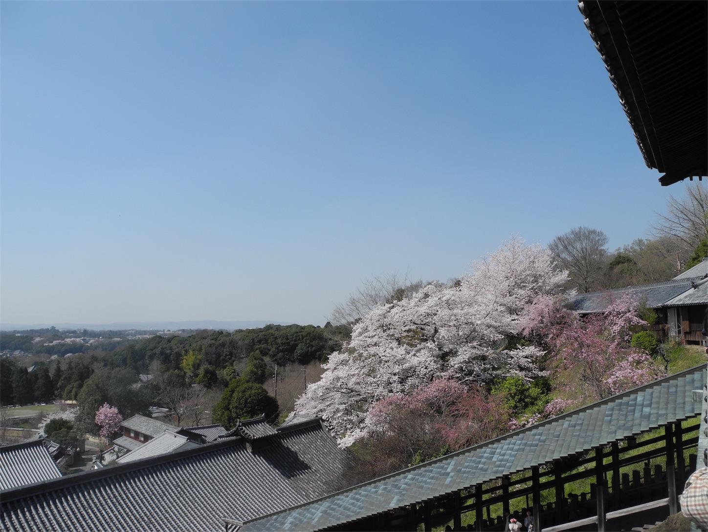 f:id:kotobuki-history:20180330025700j:image