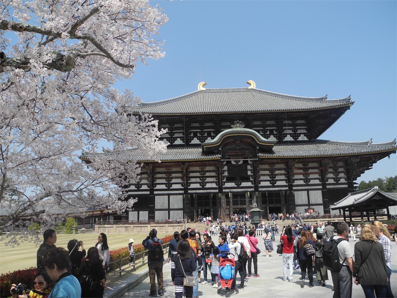 f:id:kotobuki-history:20180330033351j:image
