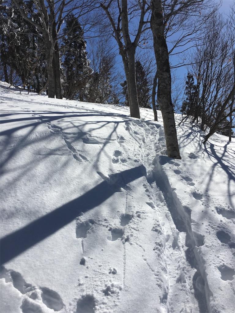 f:id:kotobuki_matsu:20170205002309j:image