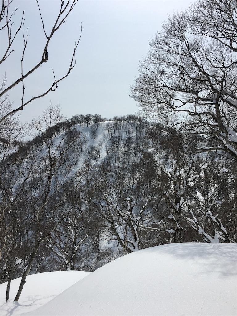 f:id:kotobuki_matsu:20170319104342j:image