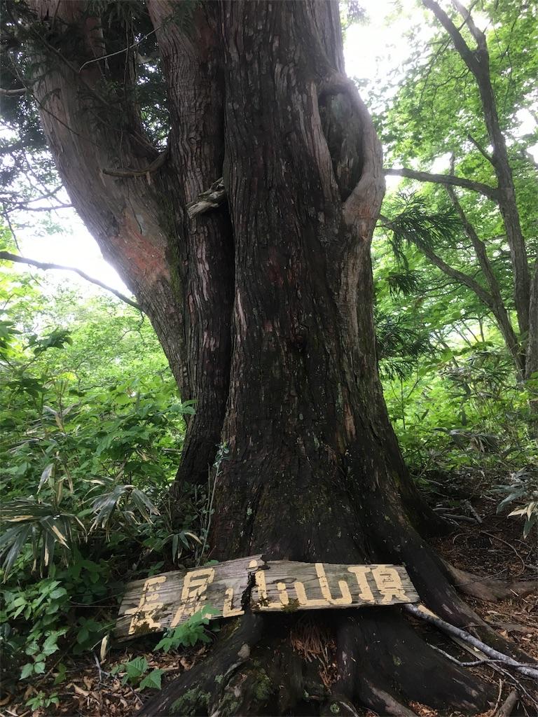 f:id:kotobuki_matsu:20170531221000j:image